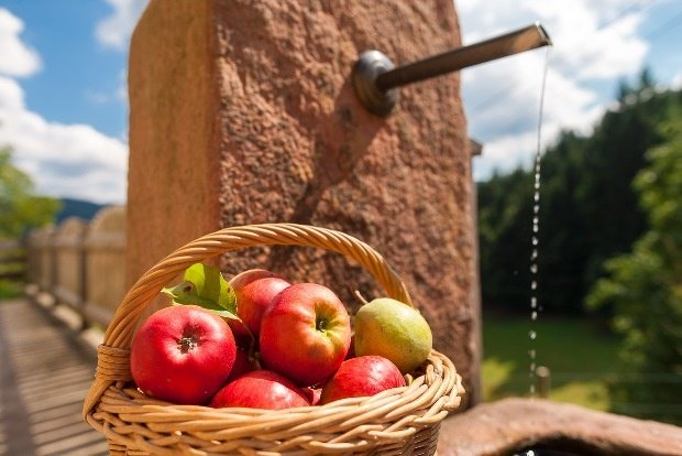 Apfelmostwochen Oberharmersbach