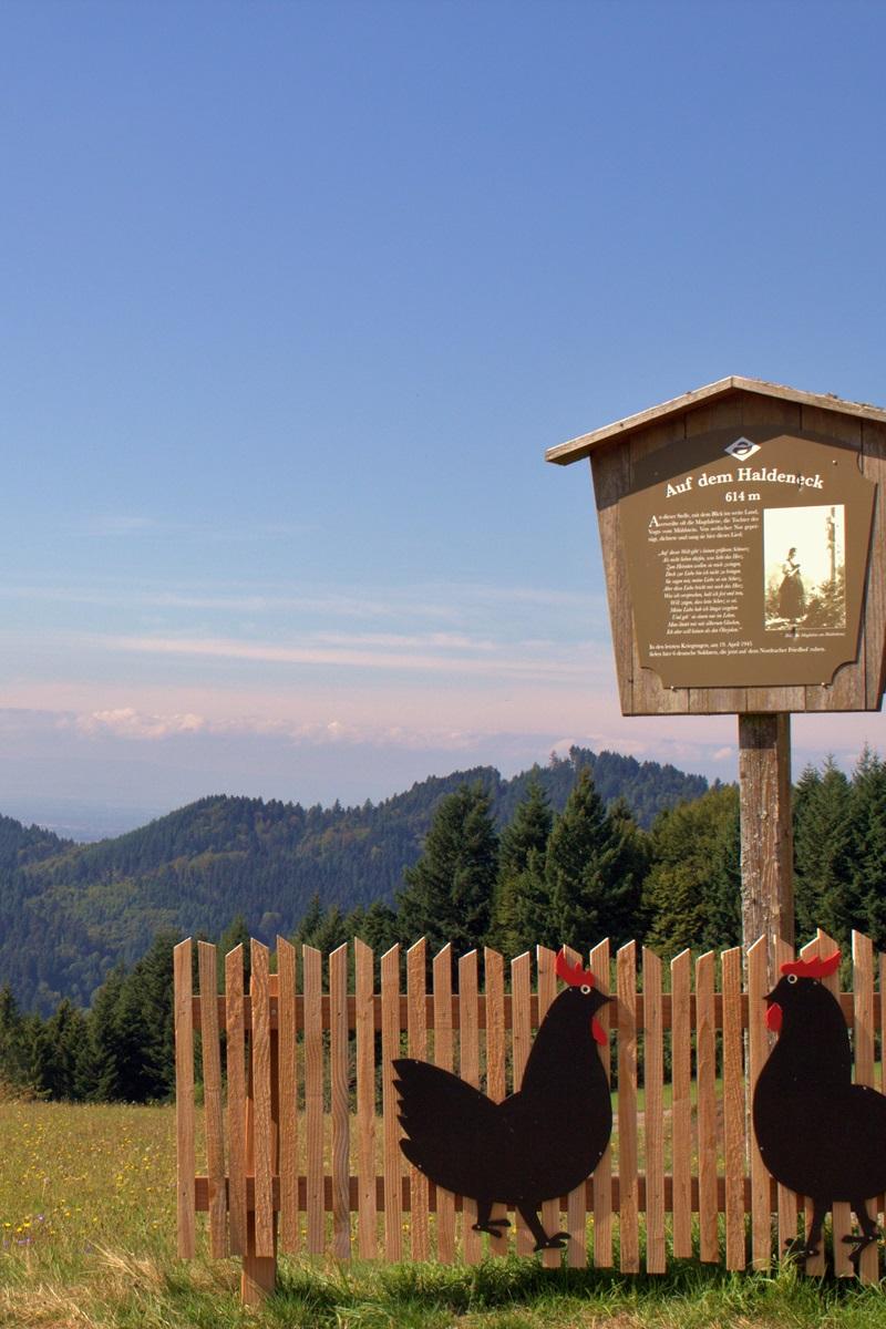 Wanderziele Premiumwanderweg Hahn und Henne