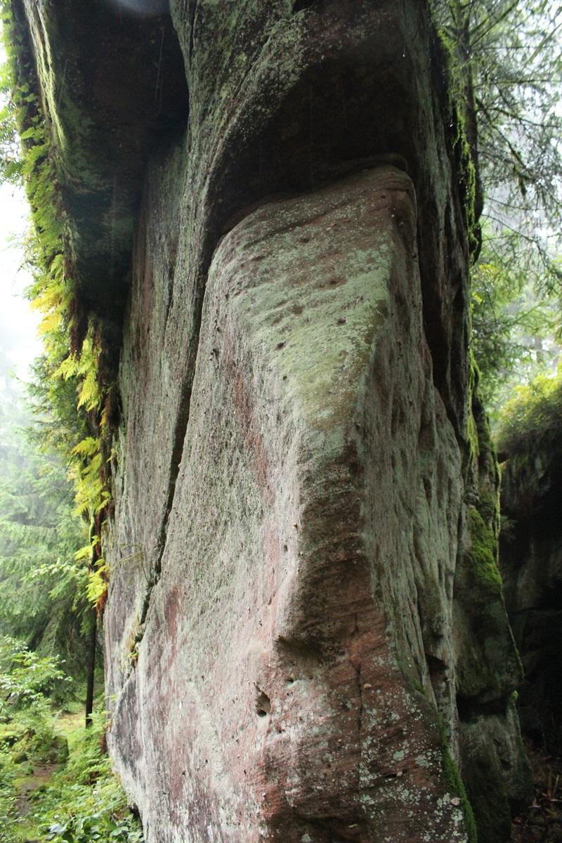 Wanderziele Erlebnisse Oberharmersbach