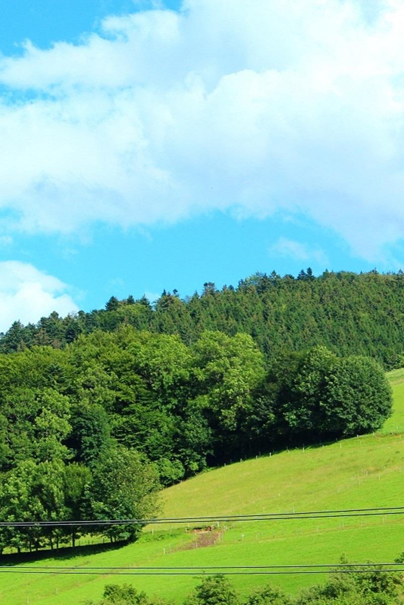 Himmelsstube Traumstube Aussicht Schwarzwald