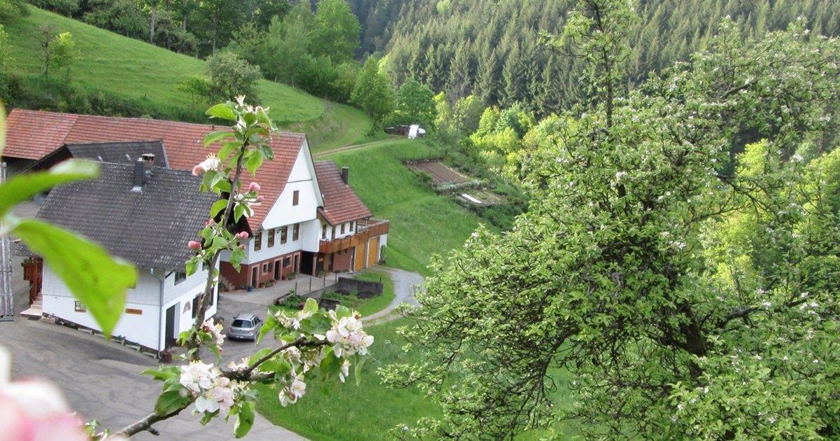 SoDa-Agentur Referenz Stinneshof Oberharmersbach