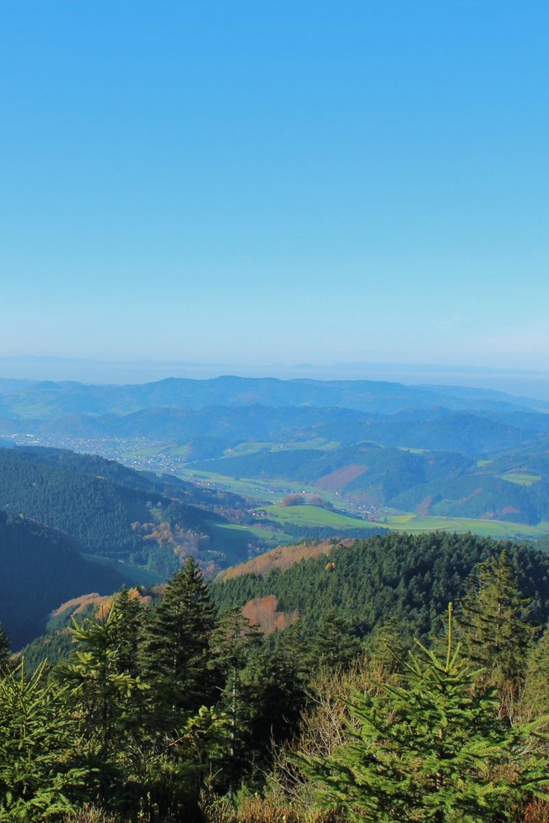 Wanderziele Erlebnisse Vogesenblick Oberharmersbach