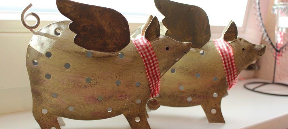 Schwein gehabt Jägiblog