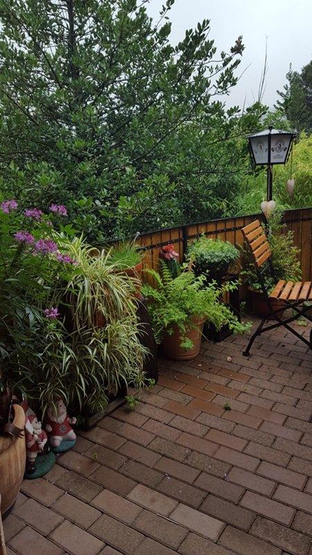 Sommerregen im Garten Jägerstüble