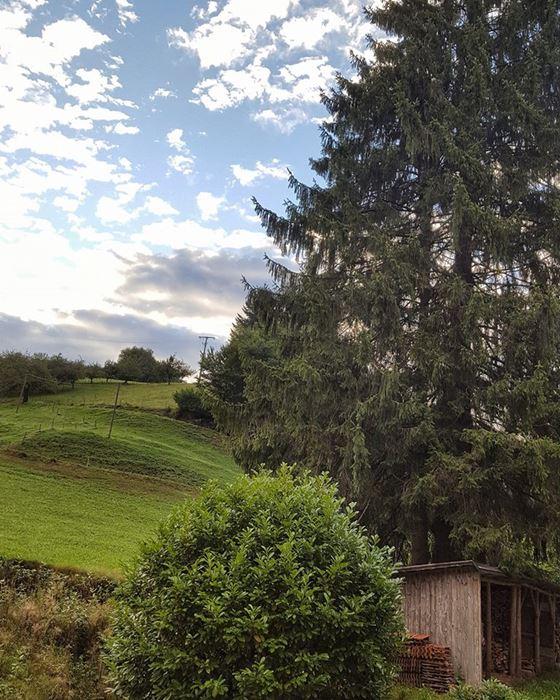 Holdersbach Oberharmersbach Schwarzwald
