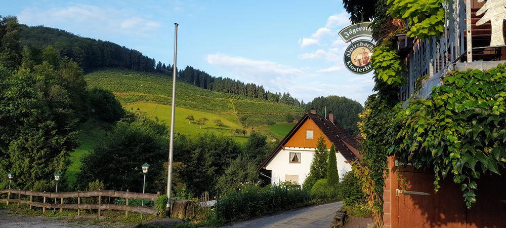 Blick ins Holdersbachtal Gasthaus Jägerstüble Oberharmersbach