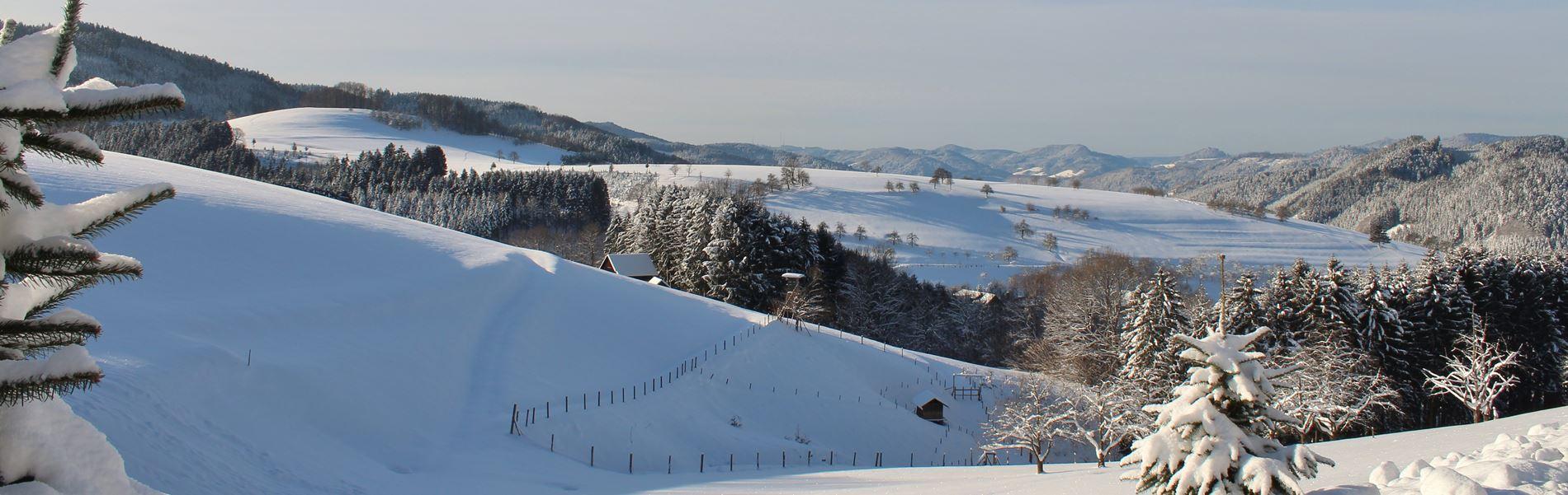Winter in Oberharmersbach im Schwarzwald