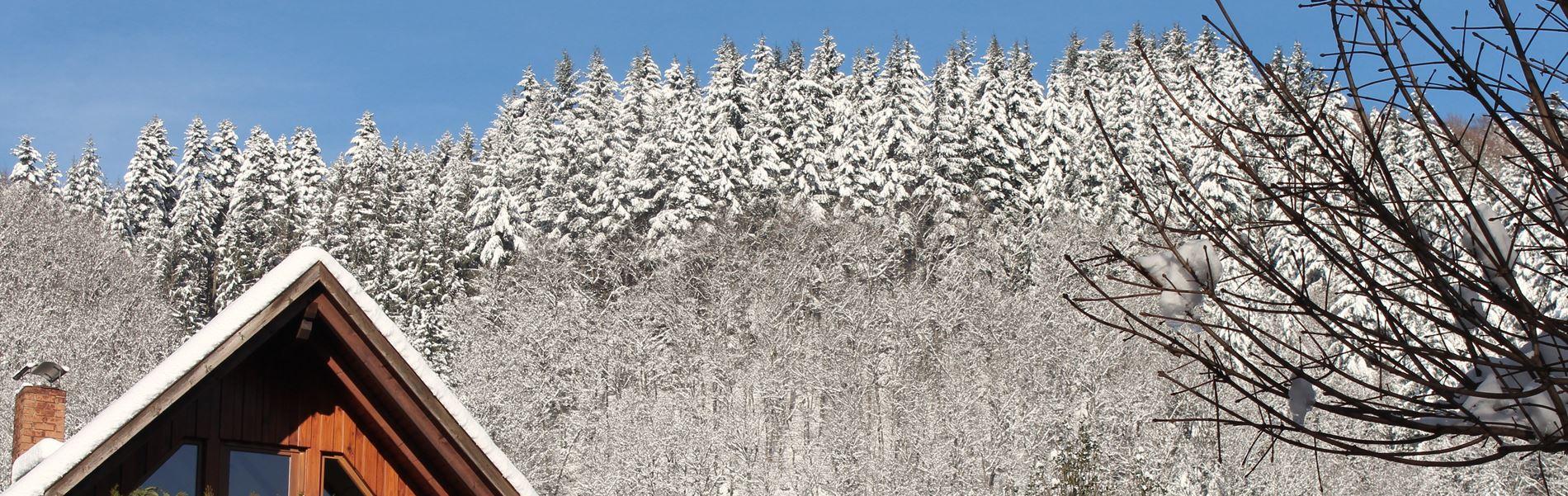 Ausblicke im Winter in Oberharmersbach