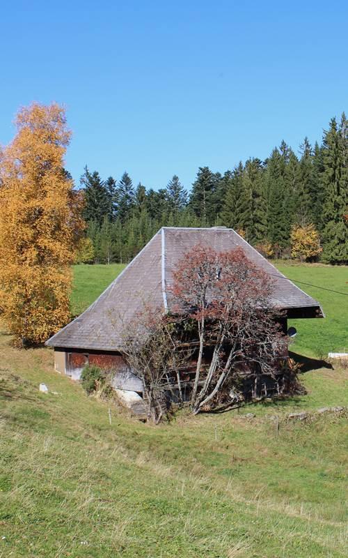 Lippenhäusle in Breitnau im Schwarzwald