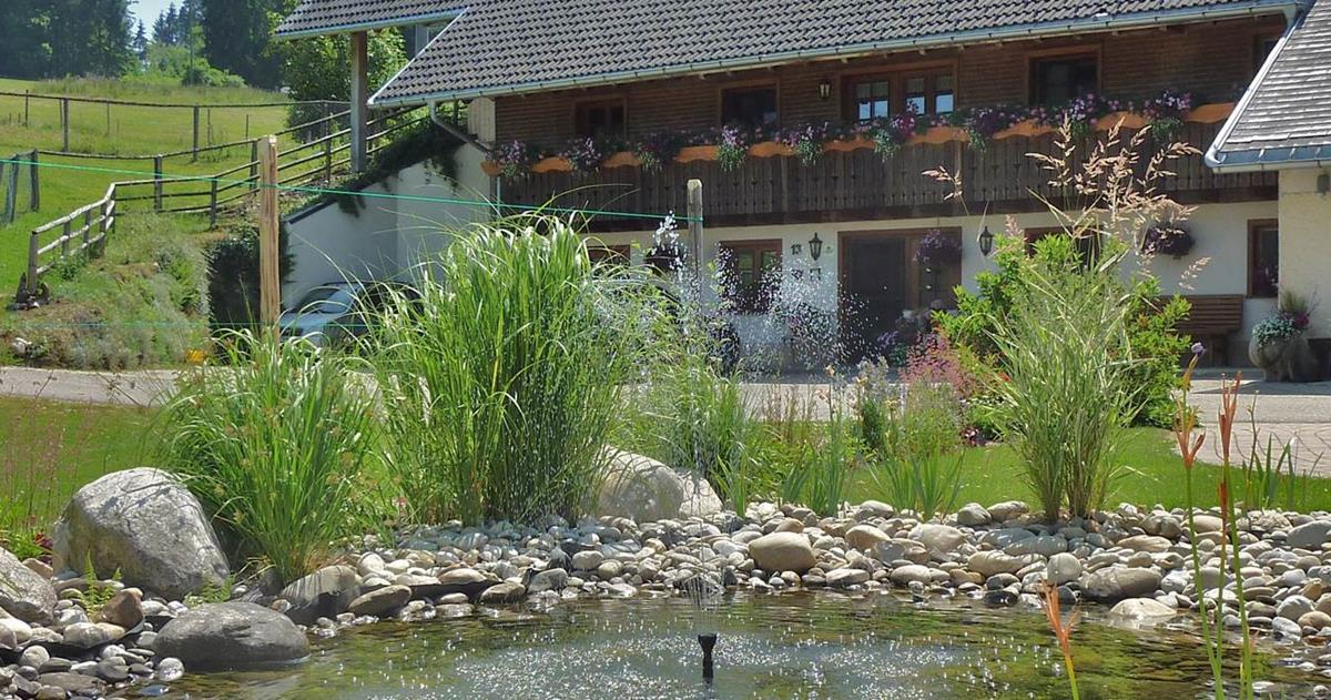 lippenhof-schwarzwald-breitnau-soda-agentur-oberharmersbach
