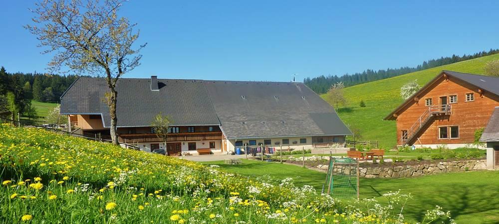 Lippenhof im Schwarzwald